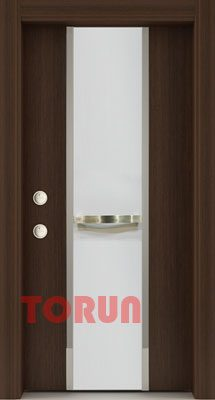 Luxury steel door