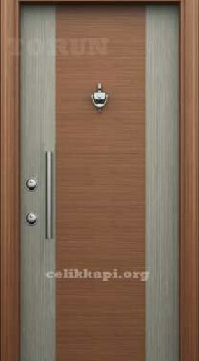 Luxury steel door model